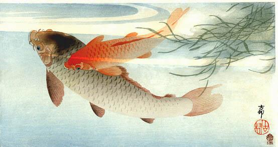Carpa dorada. Ohara Koson. (Publicado por Kokkeido)