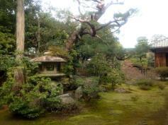 Jardín de meditación del Templo Shunkoin. (www.tripadvisor.com)