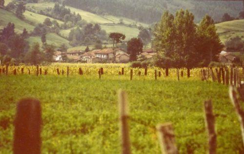 Vistas de Cabezón de la Sal (Cantabria)
