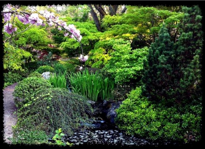 Un jard n japon s en roma japan s eye for Jardin japones precio 2016