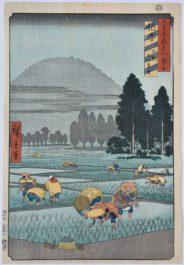 Arrozal. (Ichiryusai Hiroshige, www.ukiyoe.org)