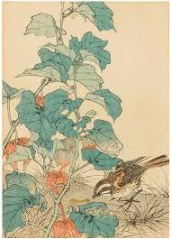 Amarilis e hibiscos, Imao Keinen