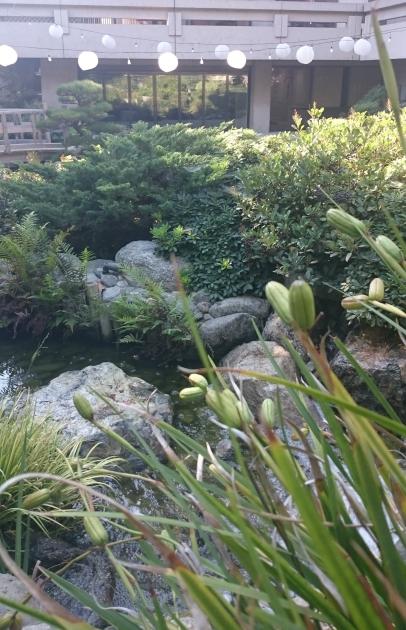 Jardín Japones Irvine