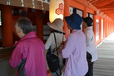 Turistas en Miyajima © Asami D. Hagiwara